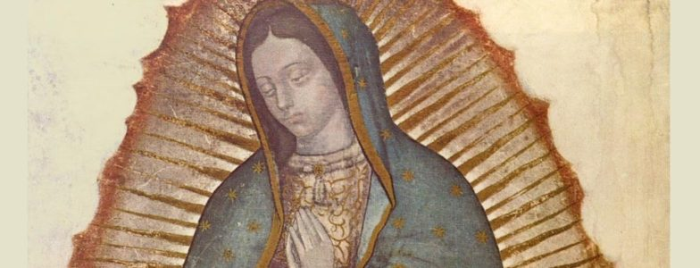 our lady of guadalupe waist up