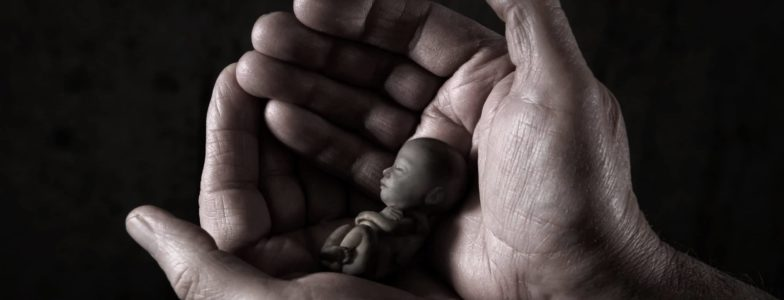 Male hands cradling a small fetus